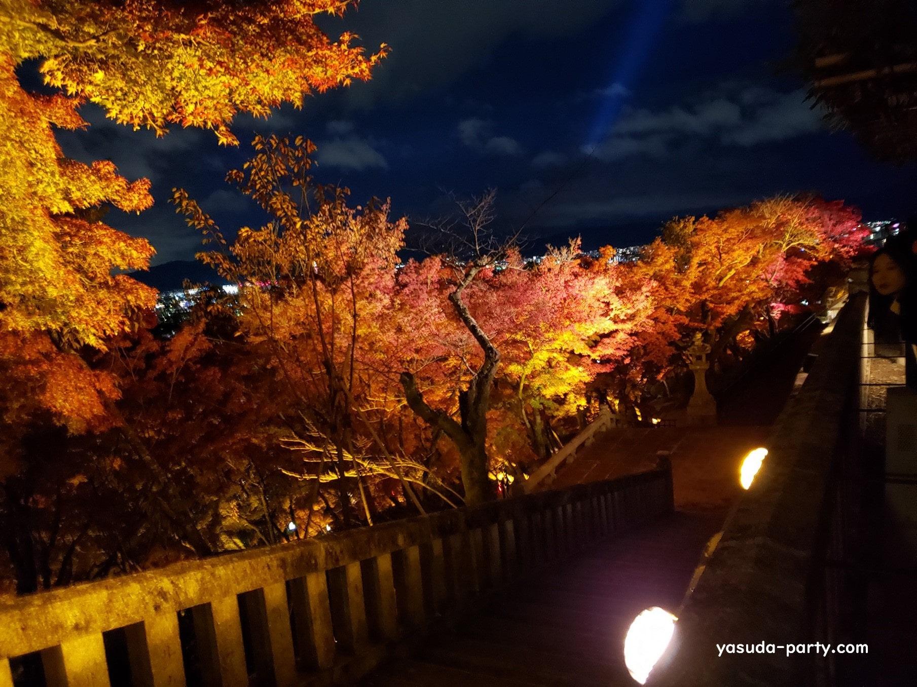 清水寺紅葉(夜)