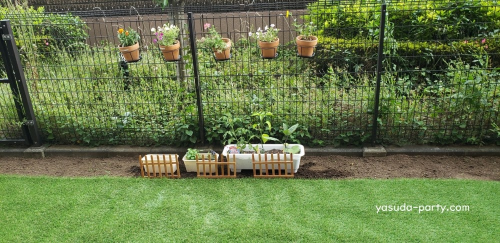 人工芝を敷いた我が家の庭