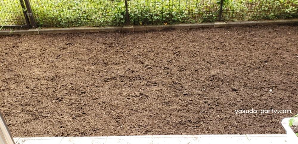 草むしりが終わった庭